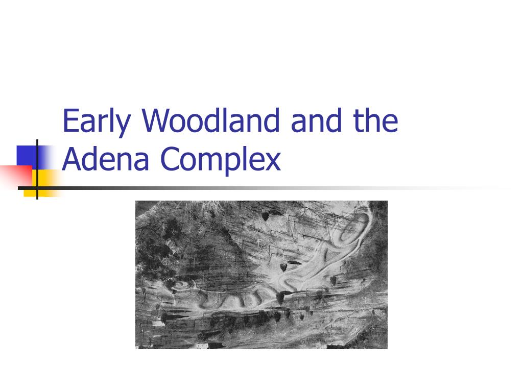 early woodland and the adena complex l.
