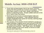 middle archaic 8000 4500 b p
