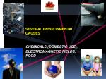 several environmental causes chemicals domestic use electromagnetic fields food