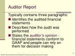 auditor report