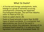 what is inulin