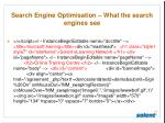 search engine optimisation what the search engines see