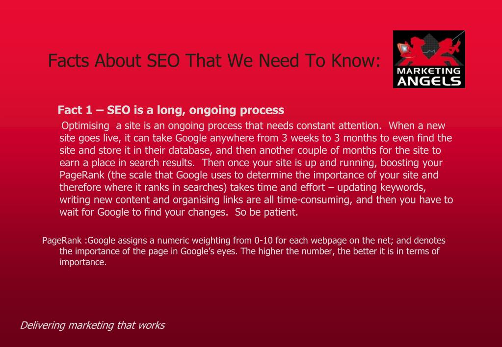 Facts About SEO That We Need To Know: