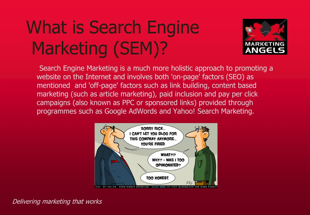 What is Search Engine