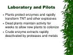 laboratory and pilots