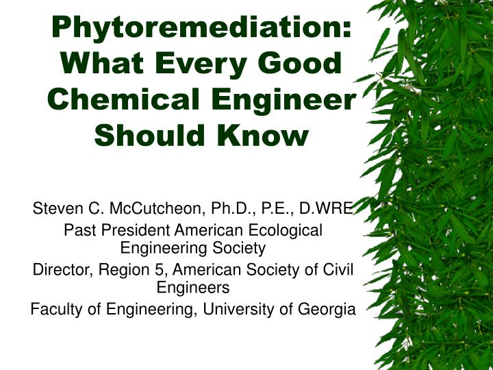 phytoremediation what every good chemical engineer should know n.