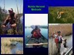 nutria harvest methods