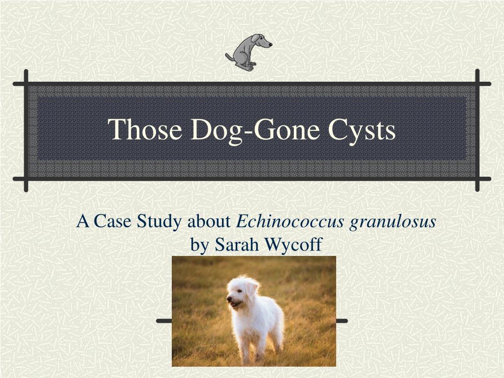 those dog gone cysts l.