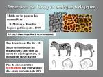 structures de turing et analogies biologiques