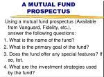 a mutual fund prospectus