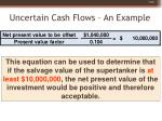 uncertain cash flows an example60