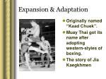 expansion adaptation