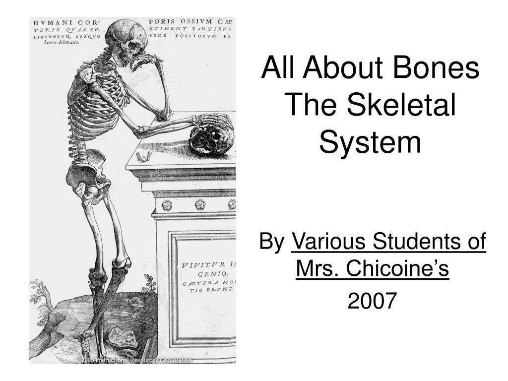 all about bones the skeletal system l.
