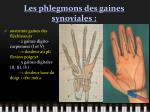 les phlegmons des gaines synoviales