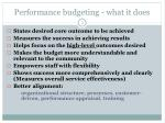 performance budgeting what it does