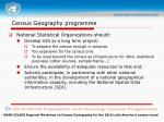 census geography programme