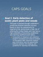 caps goals