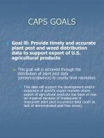 caps goals5