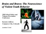 brains and brawn the neuroscience of violent youth behavior