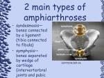 2 main types of amphiarthroses