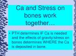 ca and stress on bones work together