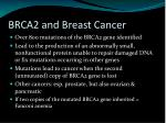 brca2 and breast cancer