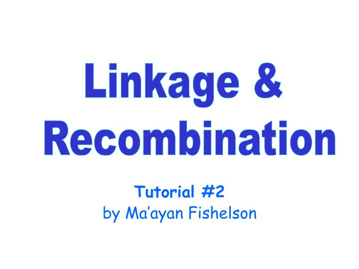 tutorial 2 by ma ayan fishelson n.