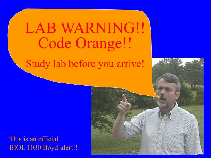 LAB WARNING!!