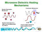 microwave dielectric heating mechanisms