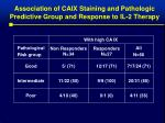 association of caix staining and pathologic predictive group and response to il 2 therapy