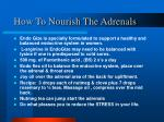 how to nourish the adrenals