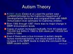 autism theory50