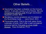 other beliefs