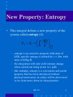new property entropy6