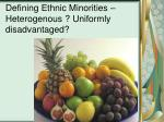defining ethnic minorities heterogenous uniformly disadvantaged