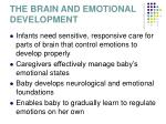 the brain and emotional development