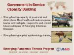 government in service capacity building