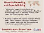 university networking and capacity building
