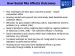 how social mix affects outcomes