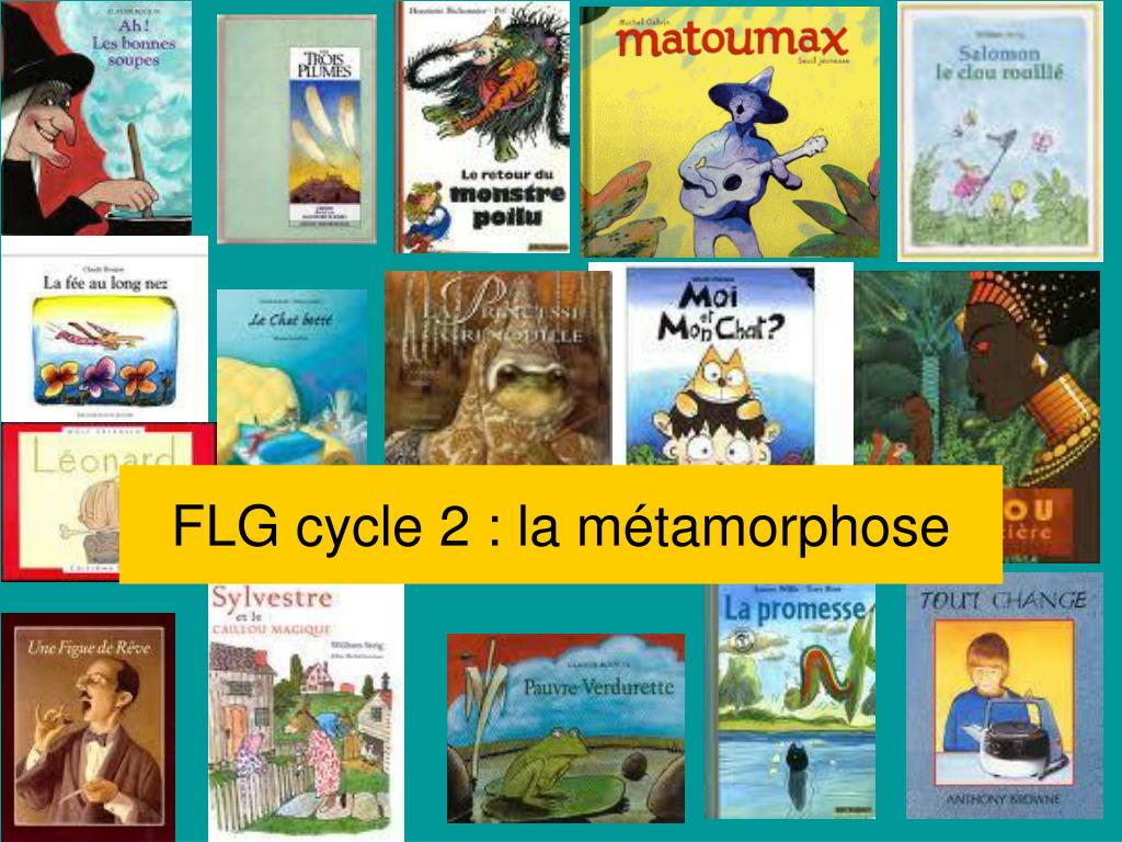 flg cycle 2 la m tamorphose l.