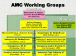 amc working groups