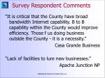 survey respondent comments28