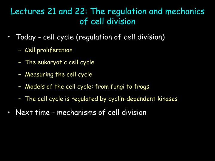 Lectures 21 and 22 the regulation and mechanics of cell division