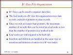 b tree file organization