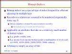 bitmap indices