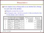 bitmap indices53