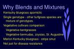 why blends and mixtures4
