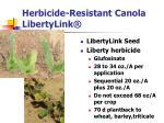 herbicide resistant canola libertylink