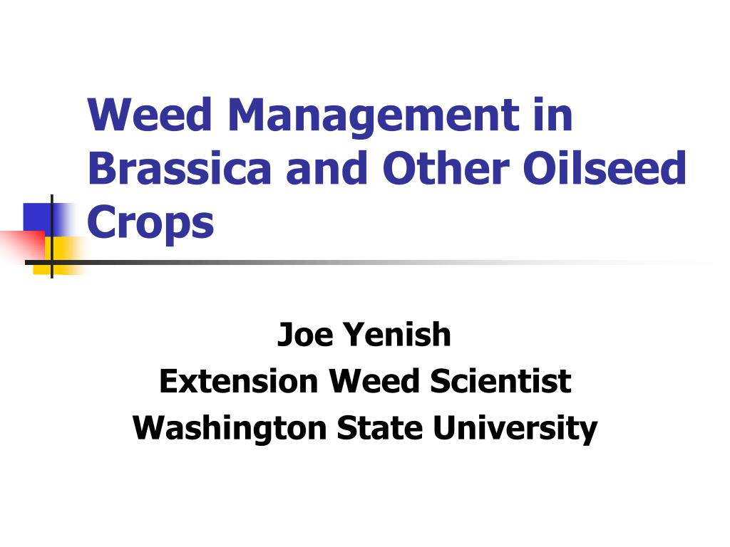 weed management in brassica and other oilseed crops l.