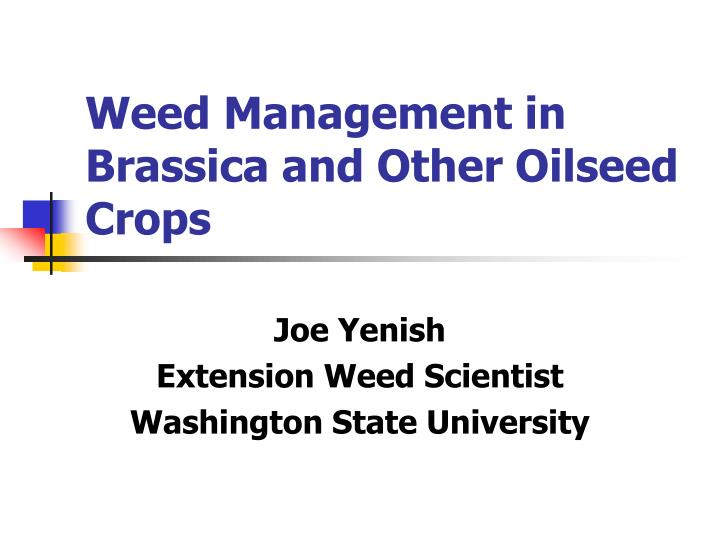 weed management in brassica and other oilseed crops n.